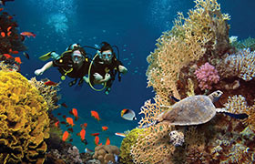 6-Day Andaman For All (Budget Tour)